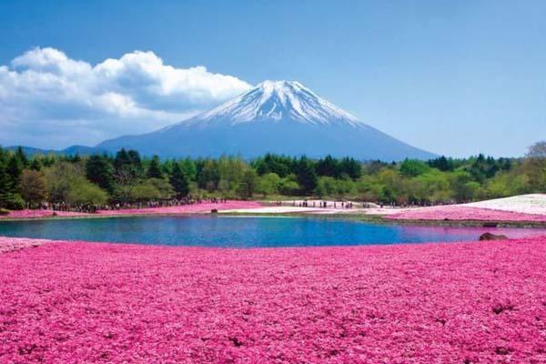 Hokkaido - Higashimokoto Park