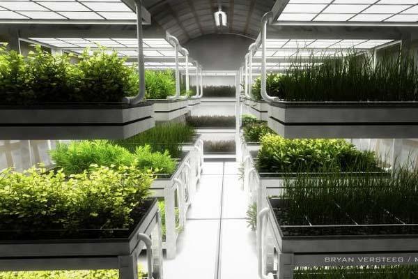 Mars One / növénytermesztő egységek