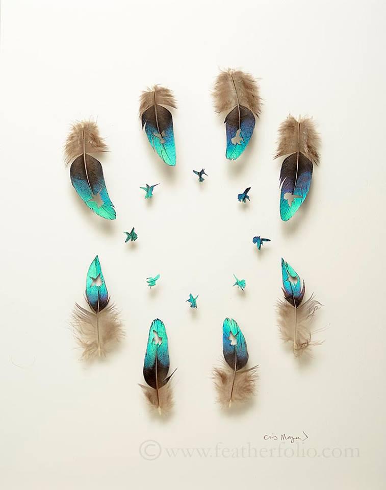 Featherfolio