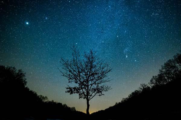 Bükki Nemzeti Park - fotó: MTI/ Komka Péter