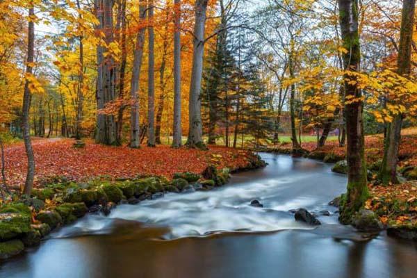 varázslatos a természet ősszel