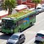 01greenroofbus