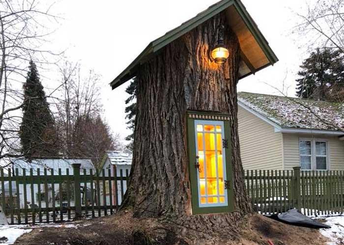 fa törzsében mini könyvtár