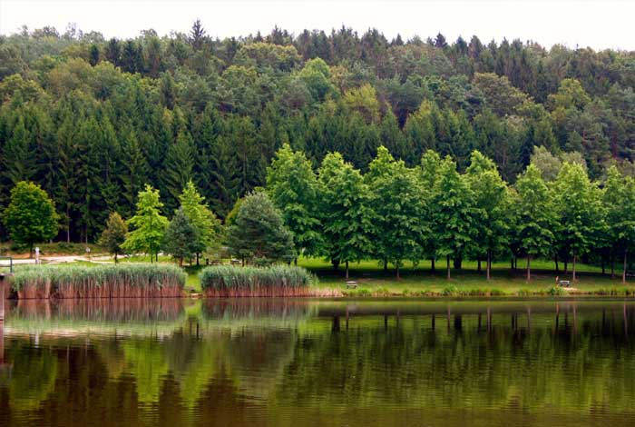 Hársas-tó magyarországi tavak