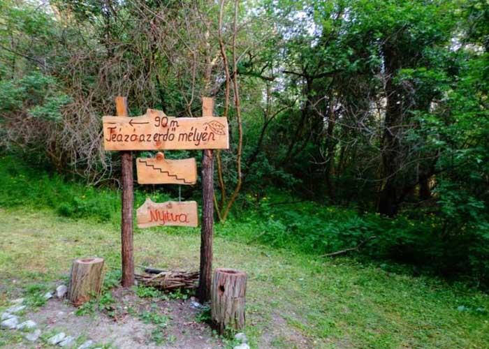 Teázó az erdő mélyén, Tihany