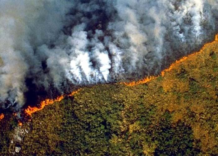 Pusztító erdőtűz az Amazonas esőerdőben