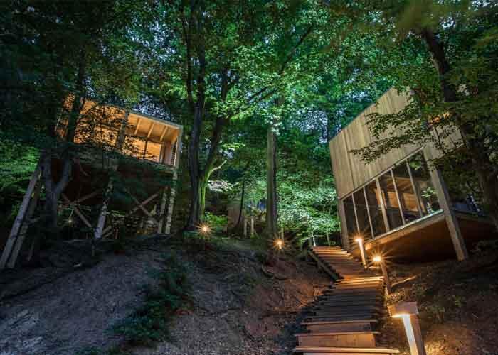 Treehouses Noszvaj extrém, különleges szállások