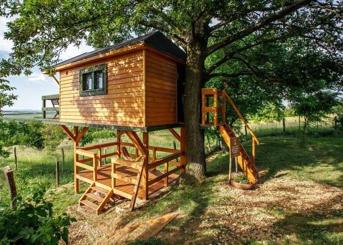 Zöld Fészek Lombház, egy kis fészek-házikó a fa tetején