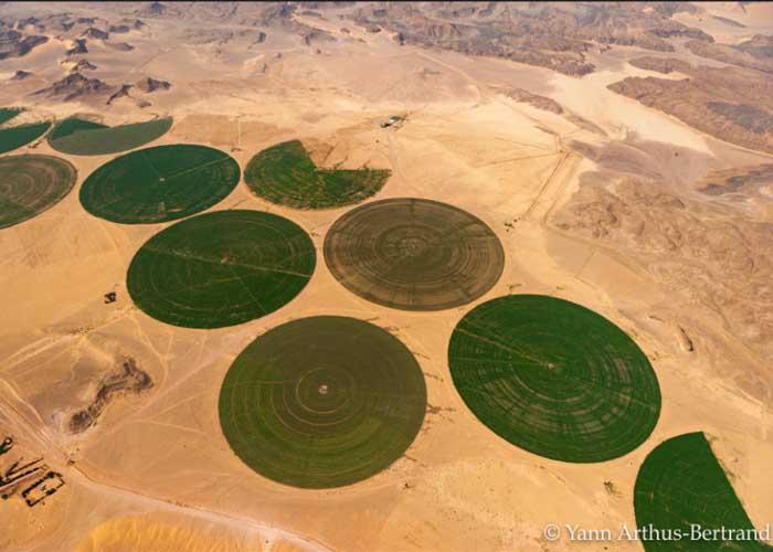 Futurisztikus ökofarm a sivatagban