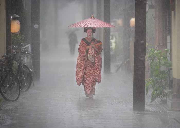 Gésa az esőben