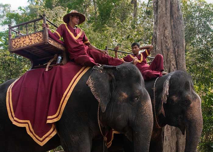 elefánt turizmus Kambodzsa