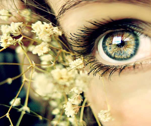 kezdje el tanulmányozni a látást